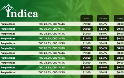 A Quick Start Guide to Dispensary Digital Menu Boards